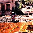 Daniel at rio tinto